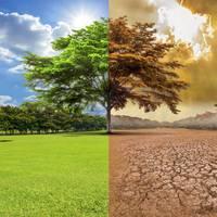 Aldaketa klimatikoari buruzko hitzaldia, Rafa Alday Aguirreche