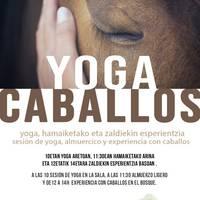 Yoga eta zaldiak, Igoan